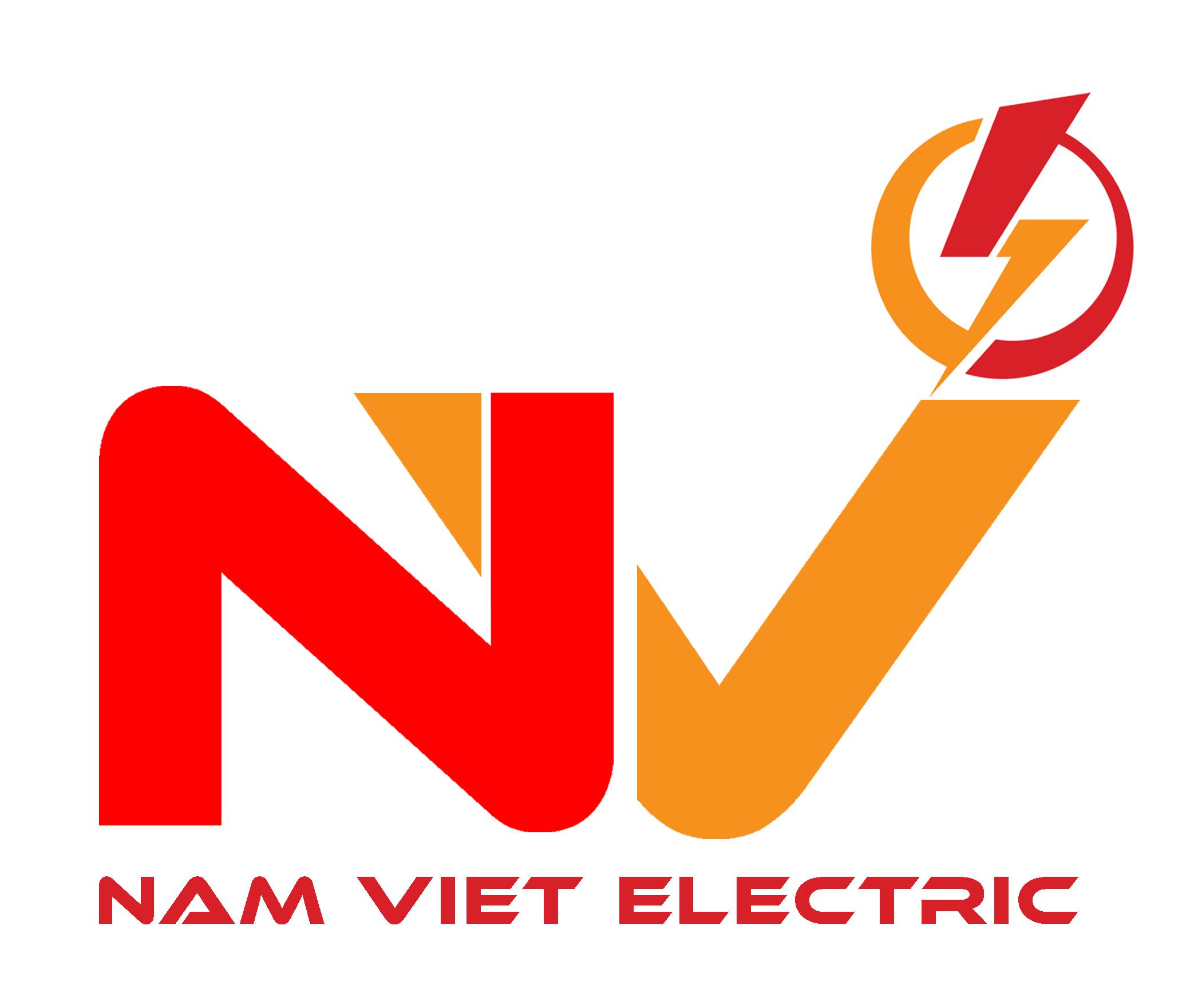 Điện Nam Việt